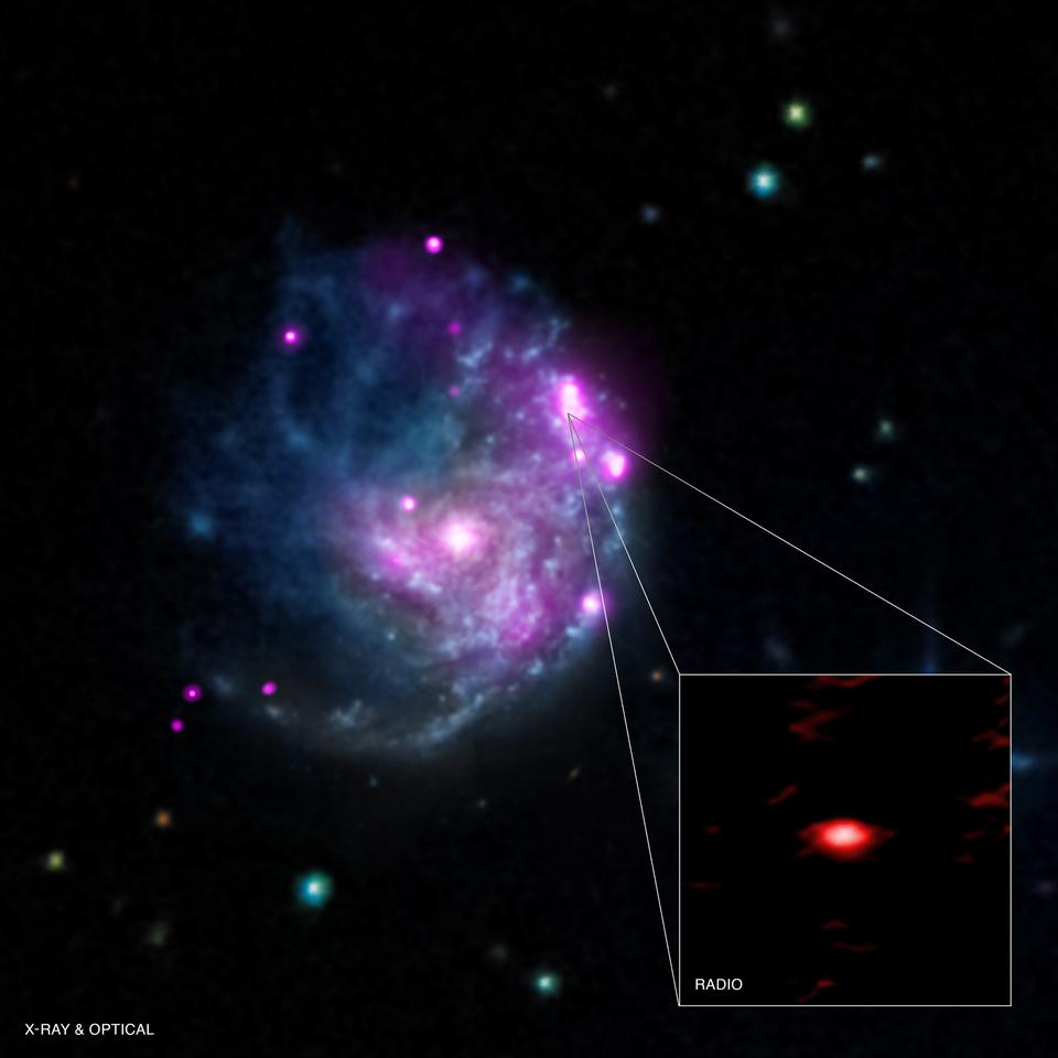 X-ray image of galaxy NGC 2276, with the magnified black hole NGC2276-3c radio imaged in the inset (Image: NASA/CXC/SAO/M.Mezcua et al & NASA/CXC/INAF/A.Wolter/EVN/VLBI)