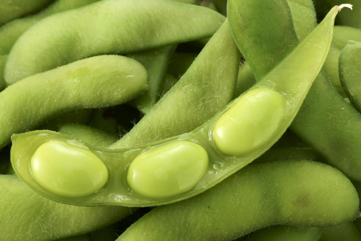 Goodyear has determined that soybean oil used in tire production could reduce the amount of petroleum-based oil needed, and increase tread longevity (Photo via Shutterstock)