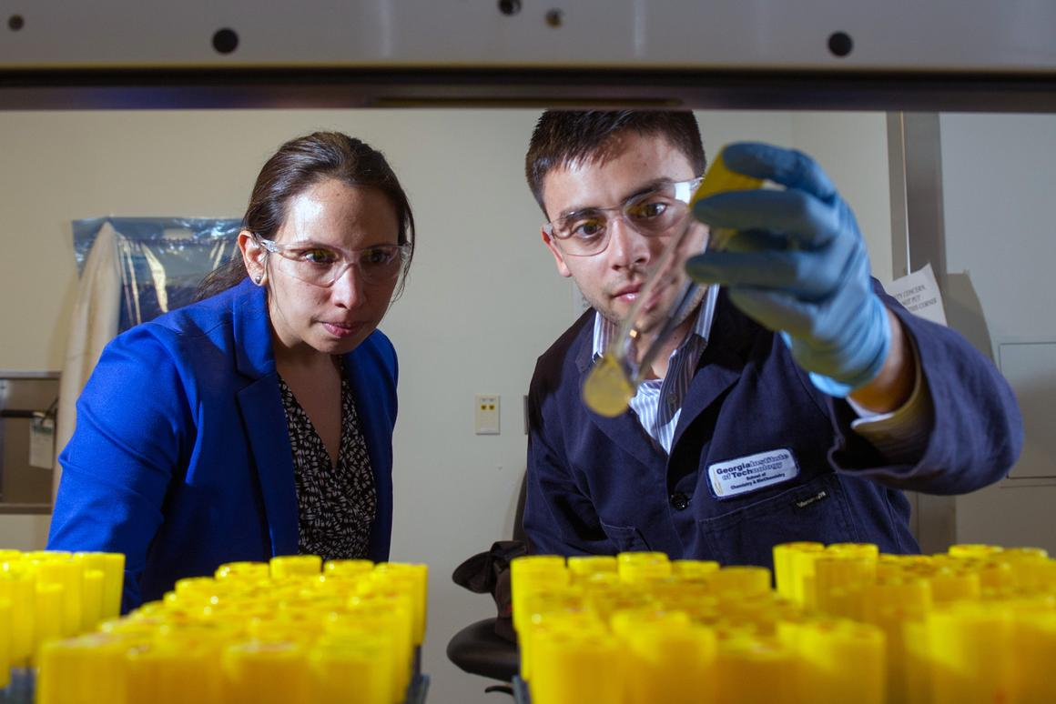 Georgia Tech researchers Pamela Peralta-Yahya and Stephen Sarria examine the production of the hydrocarbon pinene in laboratory test tubes (Photo: Georgia Tech/Rob Felt)