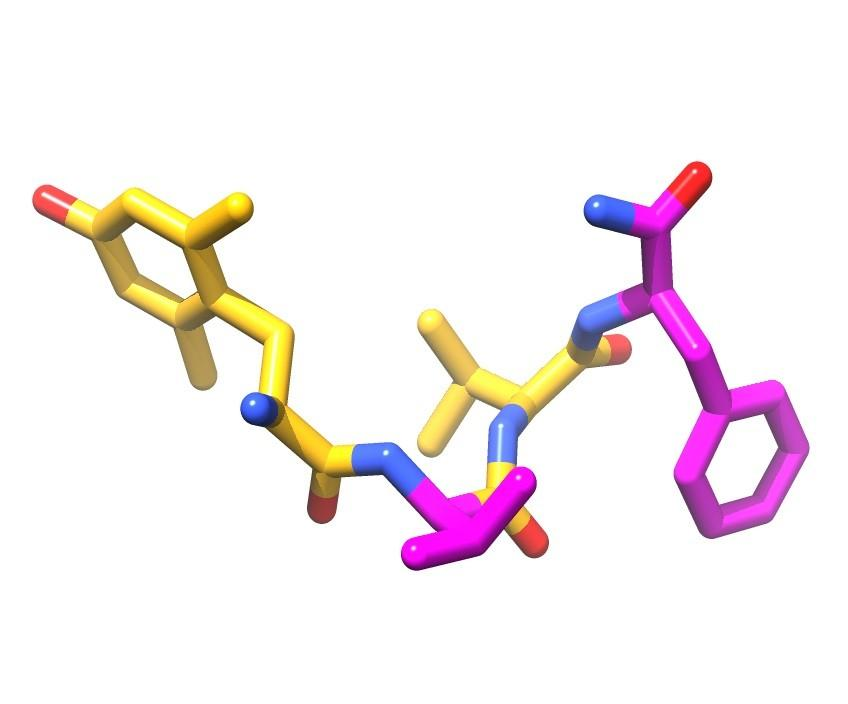 An artist impression of the newly discovered analgesic molecule, found in a fungus on a boat ramp in Tasmania