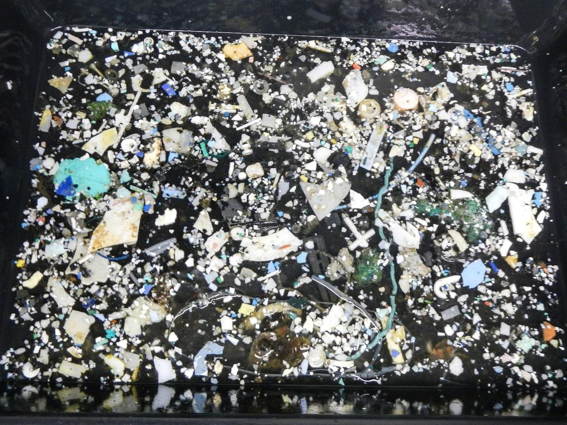 For better or for worse, science is teaching us more and more about the huge amount of plastic that we're pouring into the ocean