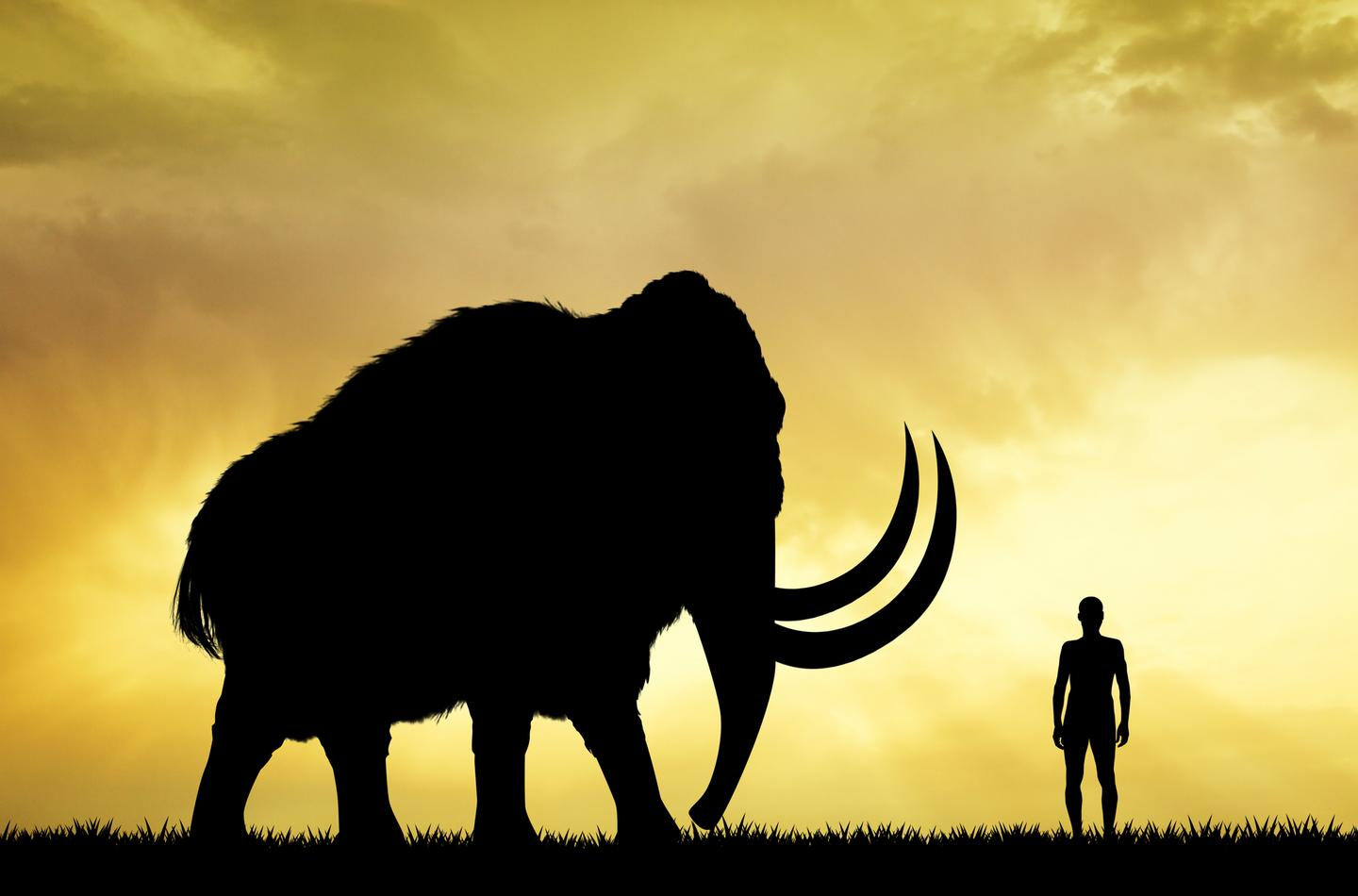 A new startup company called Colossal plans to resurrect the woolly mammoth using CRISPR gene-editing technology