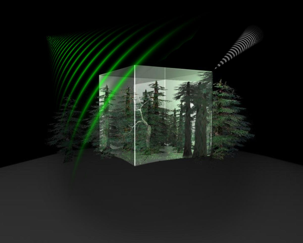ESA's Biomass Earth Explorer mission will map and measure the amount of biomass and carbon stored in the world's forests (Image: ESA/AOES Medialab)