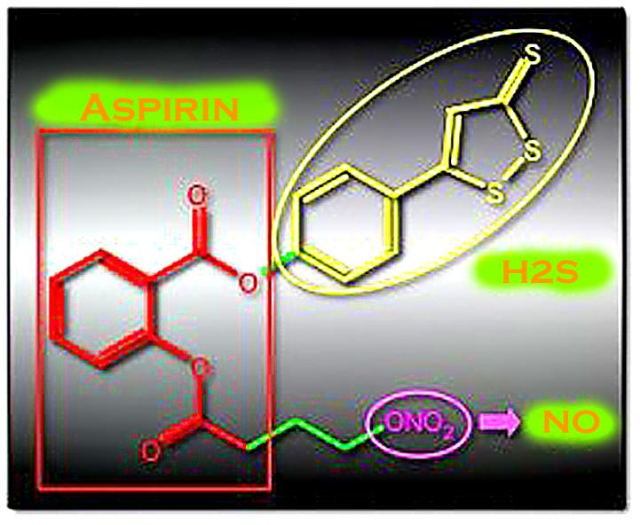 NOSH-aspirin: the scaffold of aspirin (red) bears arms that produce nitric acid (NO, purple) and hydrogen sulfide (H2S, yellow), which boost the safety and potency of the cancer-fighter (Image: City College of New York)