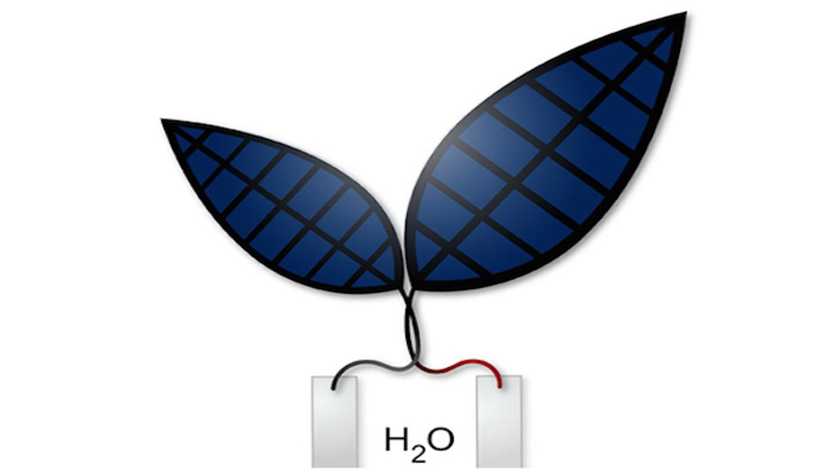 Researchers at Harvard have developed a more efficient version of the bionic leaf, which can turn sunlight and water into electricity andliquid fuels