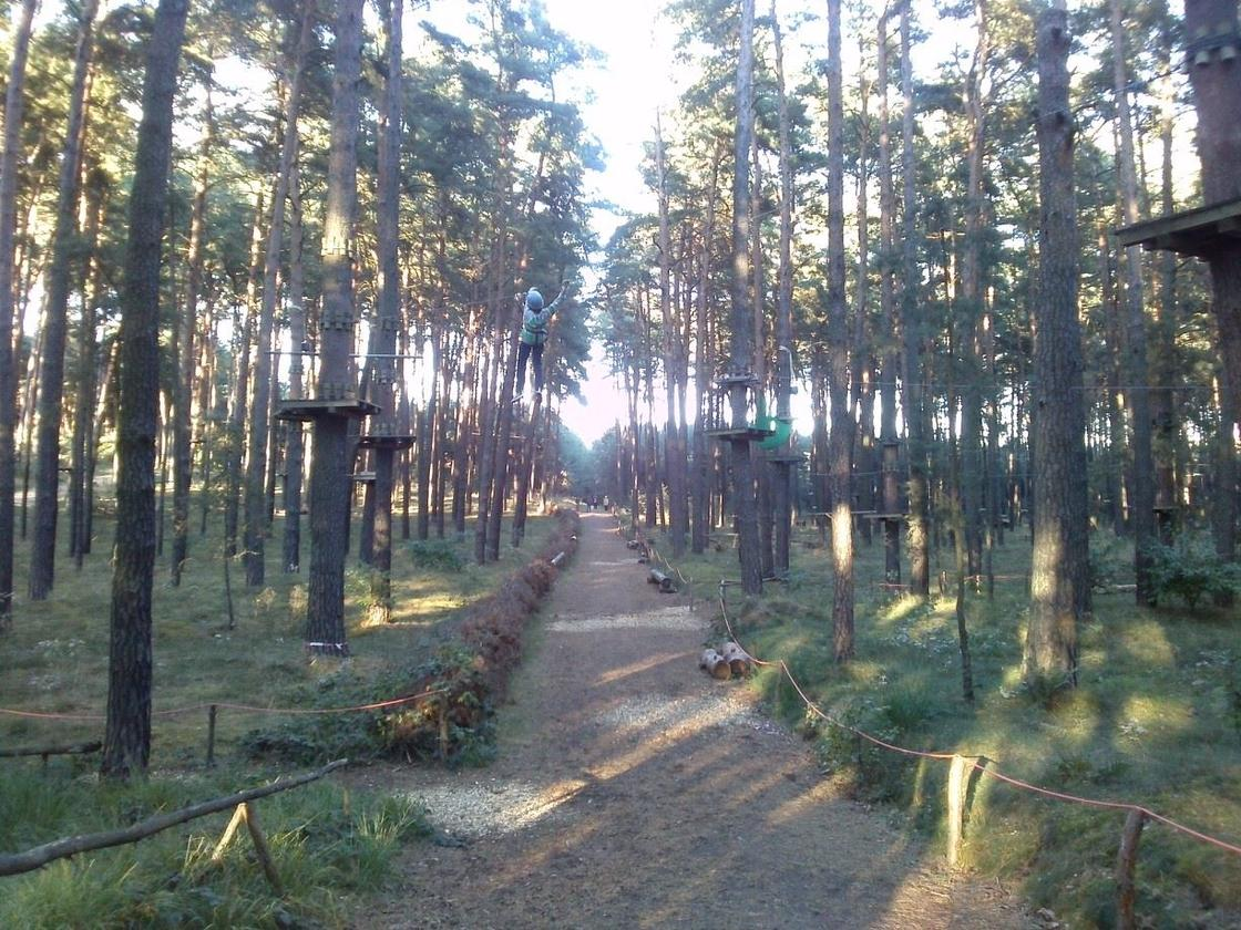 Climb Up!-Kletterwelt has three forest adventure parks in the greater Berlin area