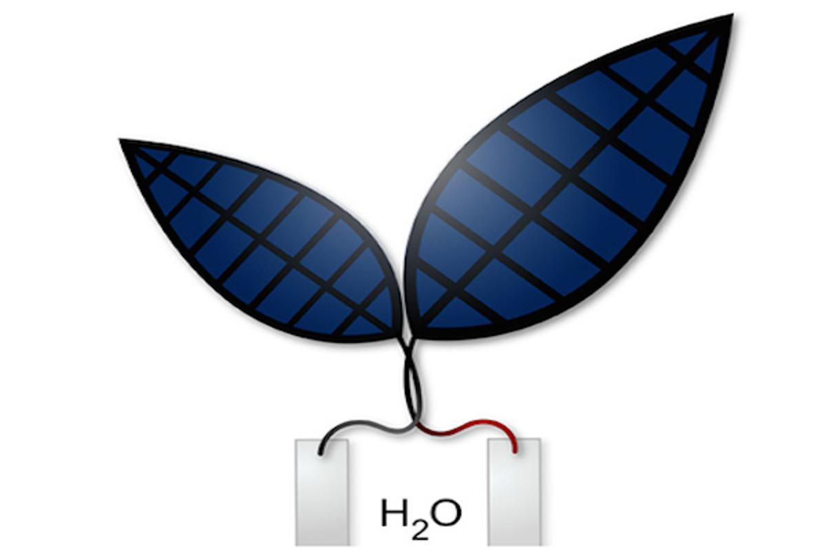 Researchers at Harvard have developed a more efficient version of the bionic leaf, which can turn sunlight and water into electricity and liquid fuels