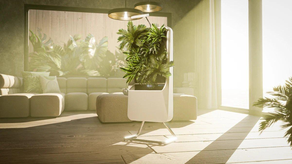 A fully automatic pot plant that can text you when it's thirsty