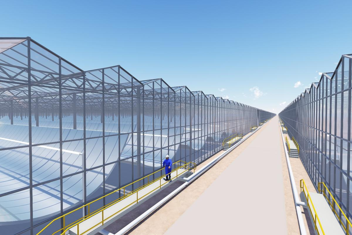 A rendering of the 36 glass modules containing the solar-powered steam flooding system being built in Oman.