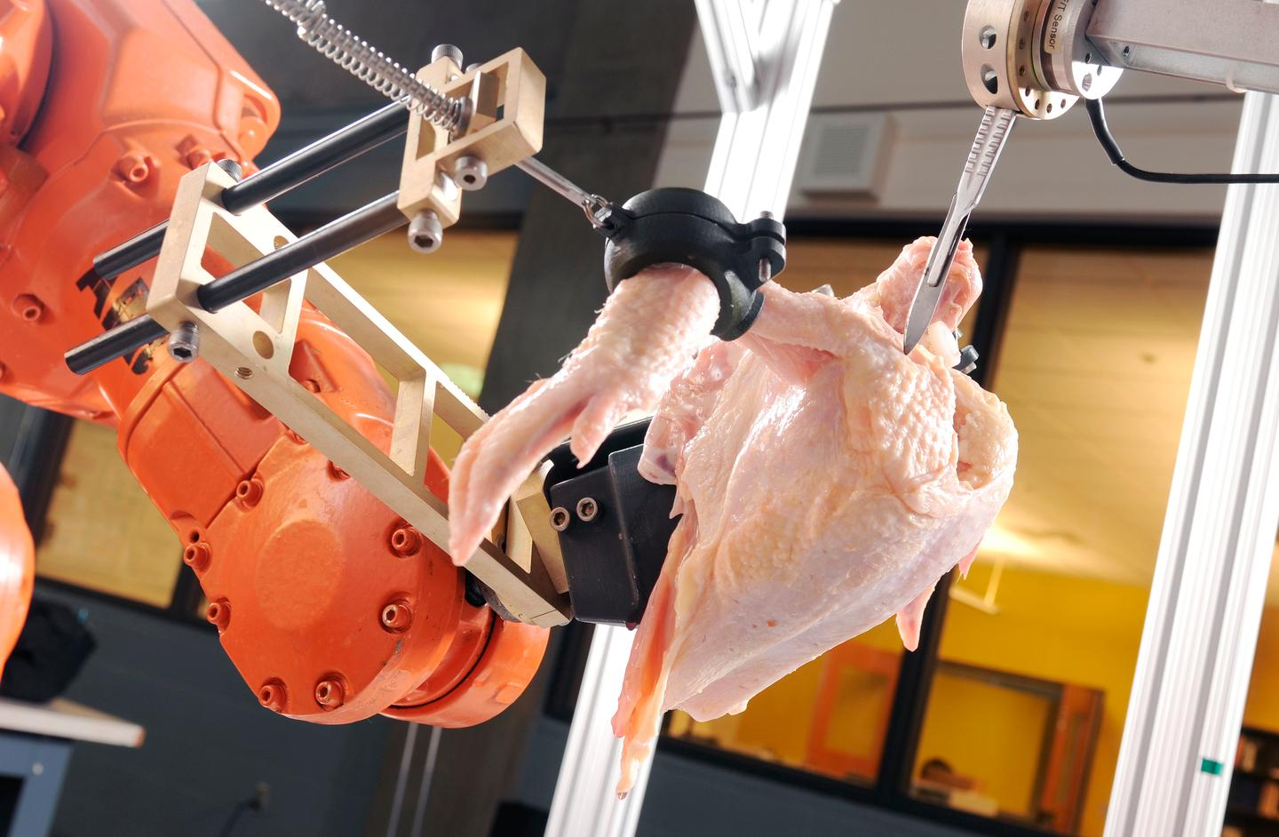 The Intelligent Cutting and Deboning System robot uses 3D imaging technology to automatically debone chickens