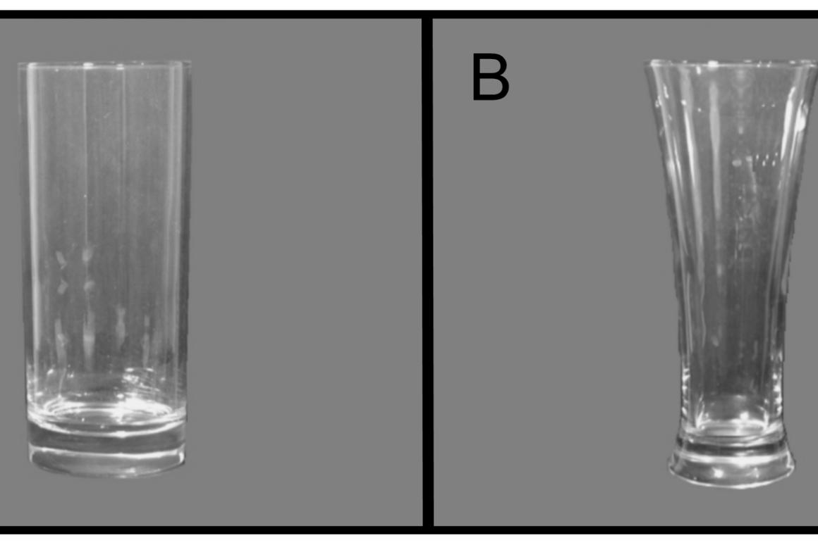The straight-sided and curved glasses used in the team's experiments (Image: PLoS ONE)