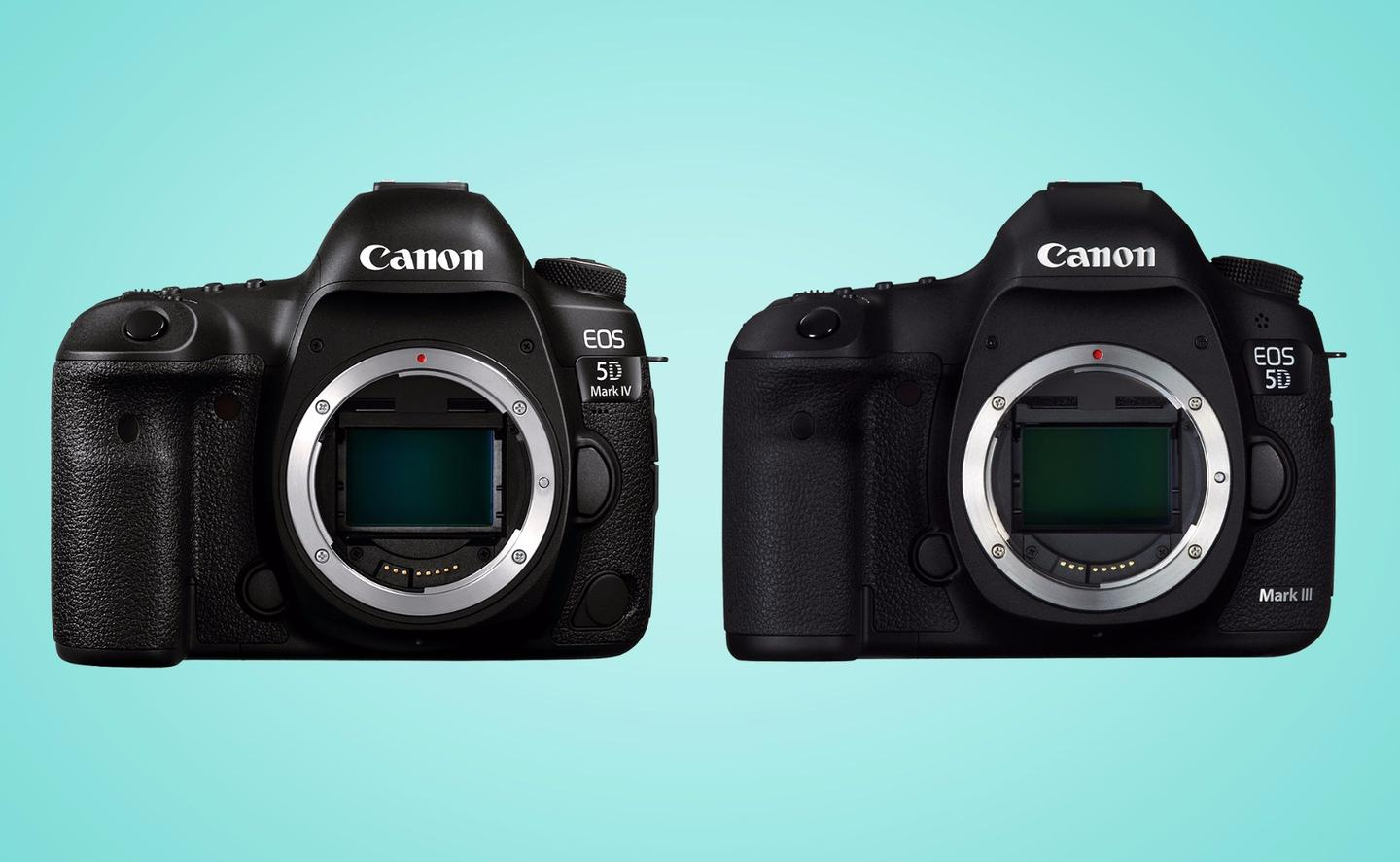 A side-by-side look at the Canon EOS 5D Mark IV and 5D Mark III