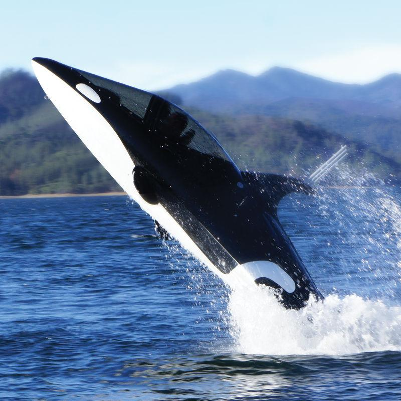 The Seabreacher Y can jump up to 12 feet out of the water (Photo: Hammacher Schlemmer)