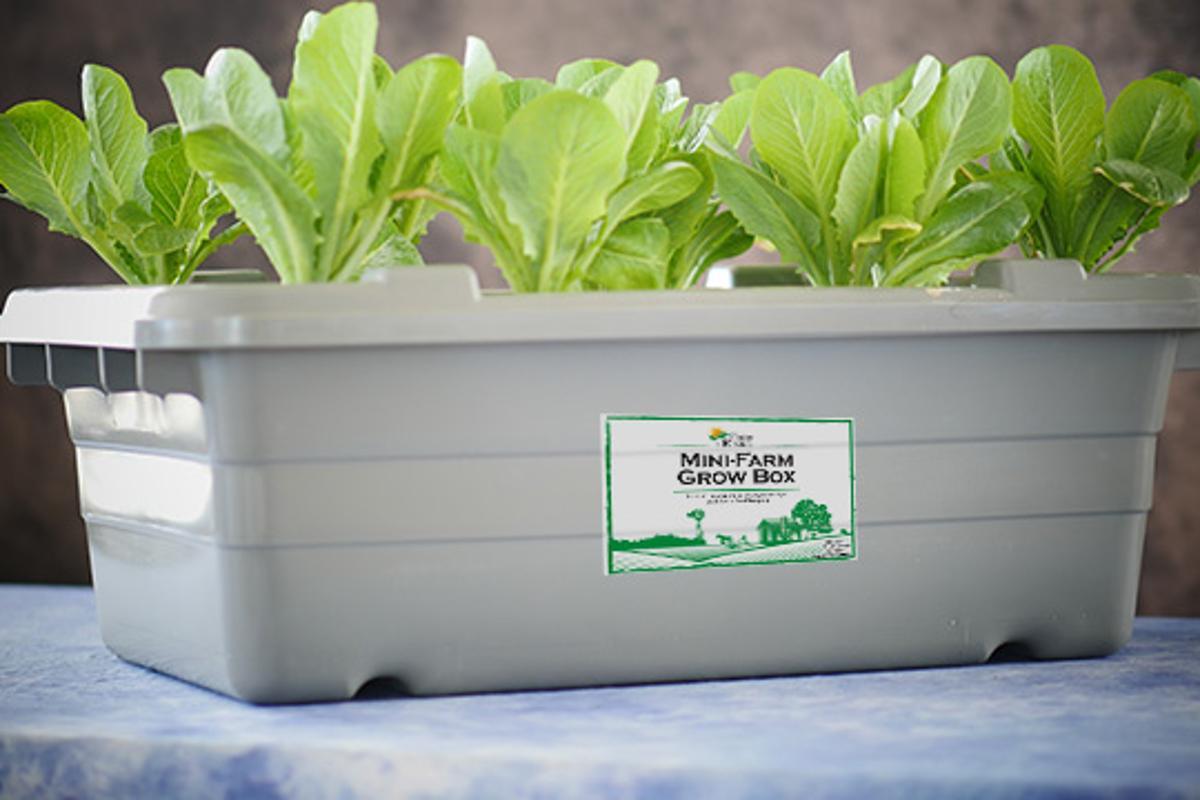 The Mini--Farm Grow Box from Food Rising (Photo: Food Rising)