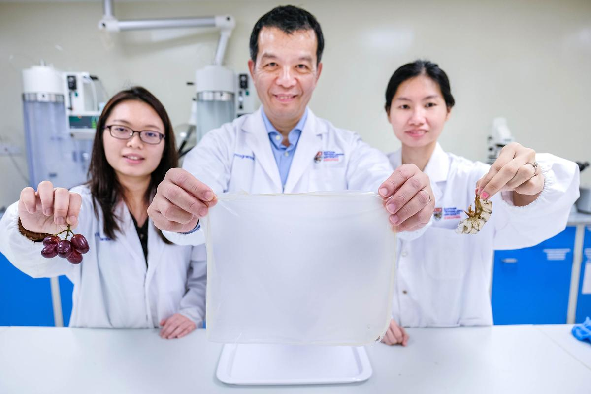 Prof. William Chen (center) holds a sheet of chitin polymer that was produced through the new fermentation process
