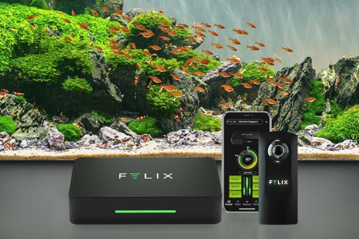 The Felix smart aquarium system is currently crowdfunding on Indiegogo