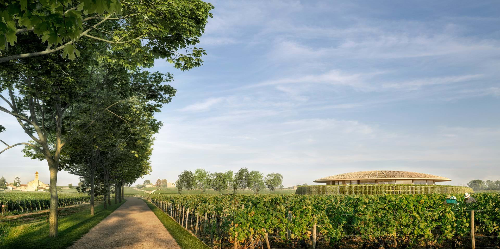 Rammed-earth winery will blend into French landscape