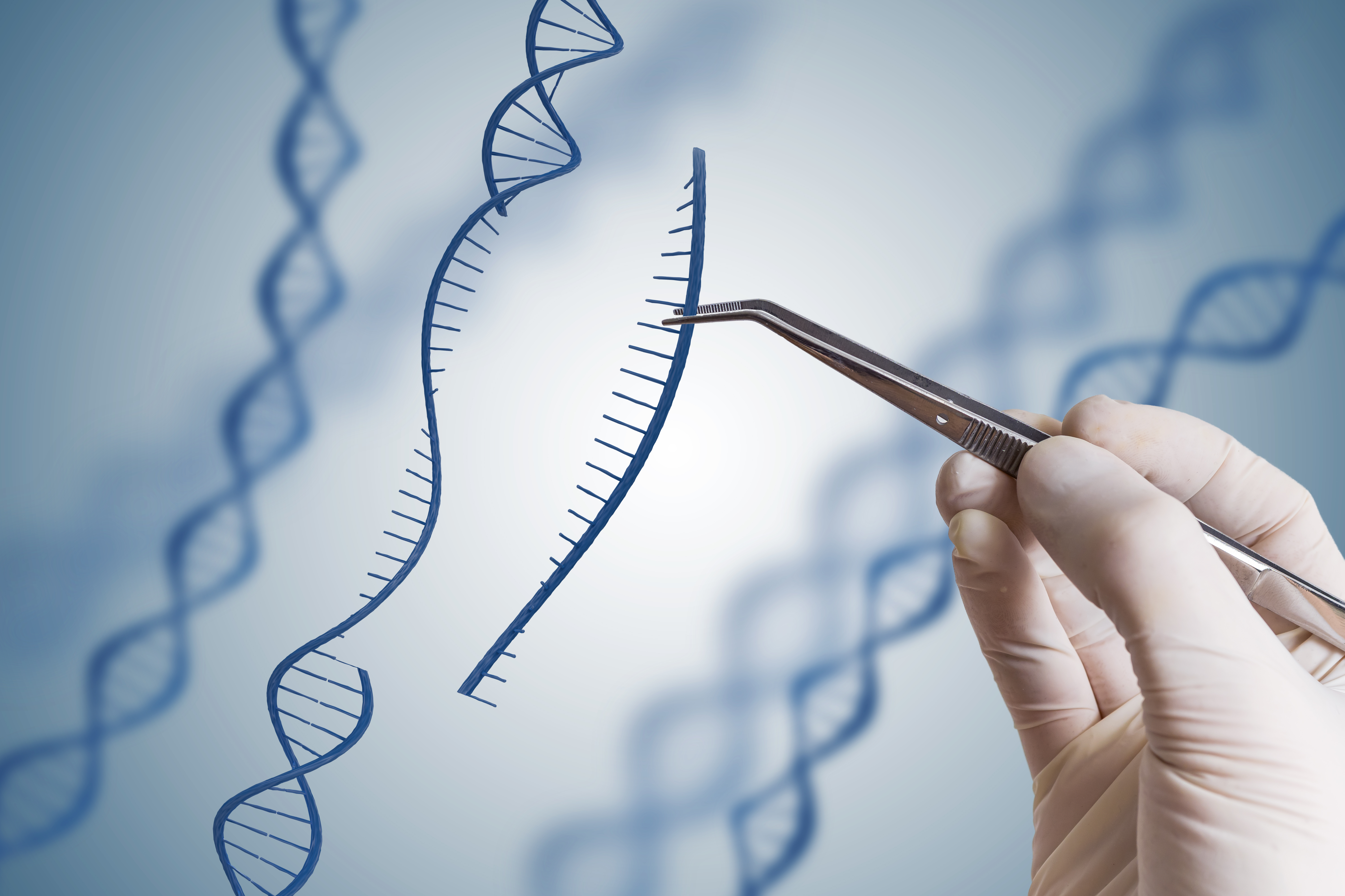 Next-gen CRISPR system allows precise search-and-replace gene editing
